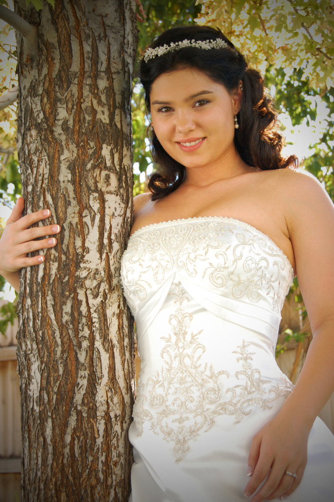 stockvault-bride115965